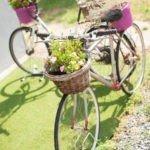 Abbiamo delle bici come fioriere al B&B Villa Sunrise