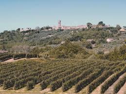 Festa del vino settembre 2016 Montecarlo Lucca