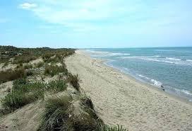 Marina di Vecchiano and free beaches